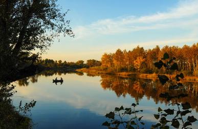 fishing-fall is fishing therapy