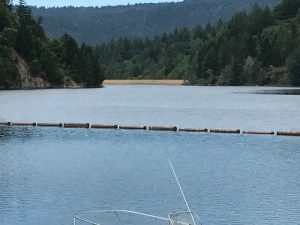 State parks often have artificial lakes